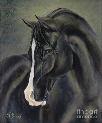 Black Stallion Painting - Ossie by Catherine Davis