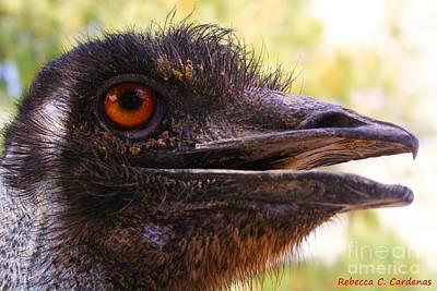Ostrich Eye Original by Rebecca Christine Cardenas