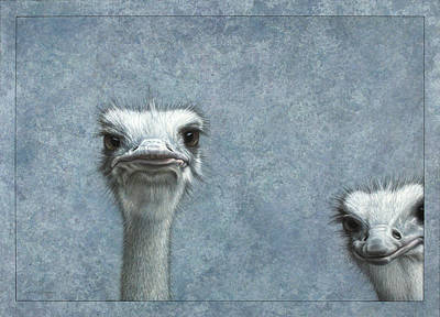 Blue Drawing - Ostriches by James W Johnson