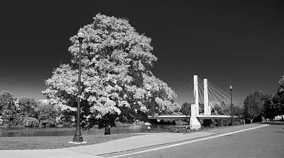 Photograph - Osu Campus 9216 by Guy Whiteley