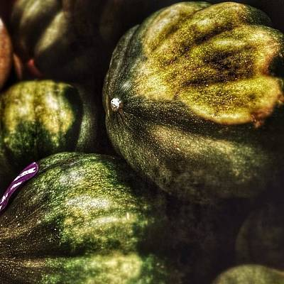 Photograph - Other Winter Veggies by Kathleen Messmer