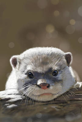 Otter Digital Art - Otter by Arie Van der Wijst