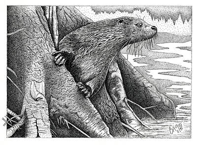 Otter Drawing - Otter by Brian Gilna