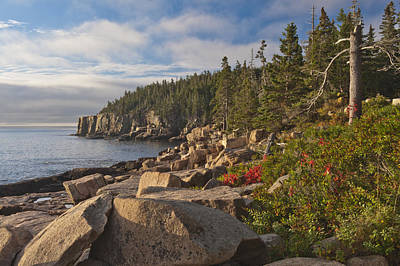 Art Print featuring the photograph Otter Cliff Morning by Rick Hartigan