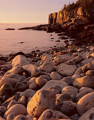 Photograph - Otter Cliffs - Boulder Beach by Tom Daniel