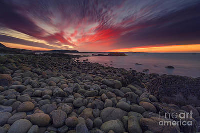 Maine Shore Photograph - Otter Dawn by Marco Crupi