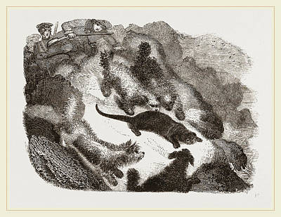 Otter Drawing - Otter-hunting by Litz Collection