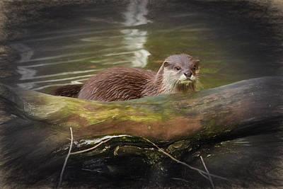 Digital Art - Otter by Ian Merton