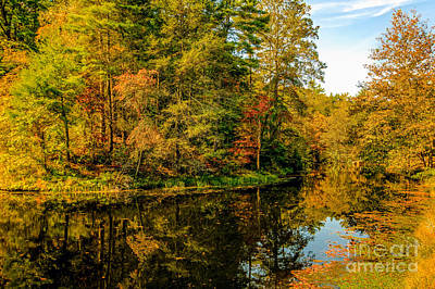 Otter Lake In The Fall Art Print by Mark East