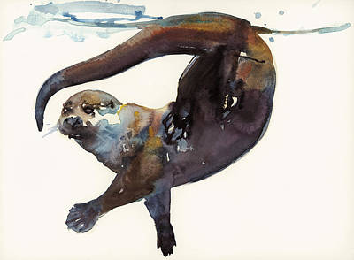 Otter Study II  Art Print by Mark Adlington