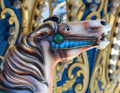 Horse Photograph - Our Carousel by The Art Of Marilyn Ridoutt-Greene