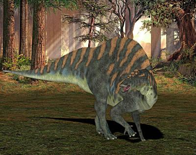 Paleozoology Photograph - Ouranosaurus Dinosaur by Friedrich Saurer