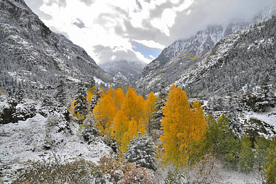 Wine Corks - Ouray Fall Colors by Ray Mathis