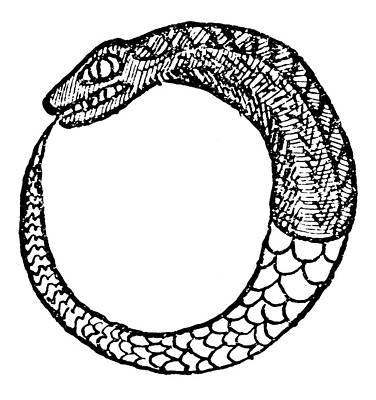 Occult Painting - Ouroboros, 16th Century by Granger