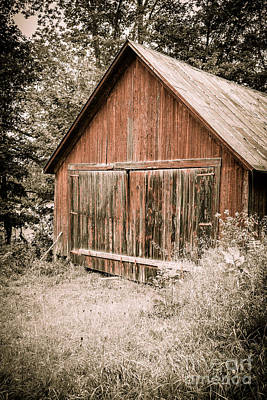 Shed Photograph - Out By The Woodshed by Edward Fielding