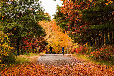 Photograph - Out Enjoying The New England Fall Color by Jeff Folger