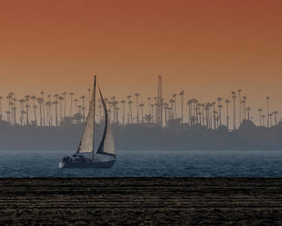 Photograph - Out For A Sail 2 by Ernie Echols