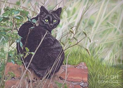 Pastel - Out Hunting by Karie-Ann Cooper