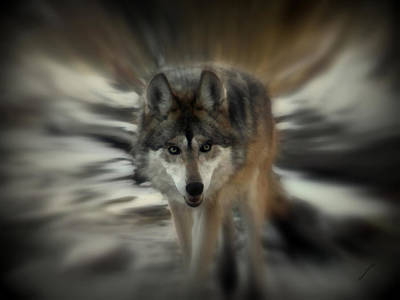 Canines Digital Art - Out Of Nowhere 2 by Ernie Echols