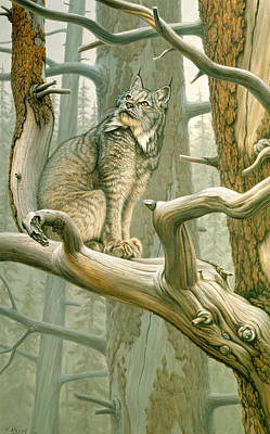 Old Painting - Out Of Reach - Lynx by Paul Krapf