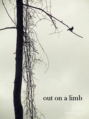 Out On A Limb Art Print by Joe Jake Pratt