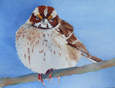 Painting - Out On A Limb by Judy Mercer