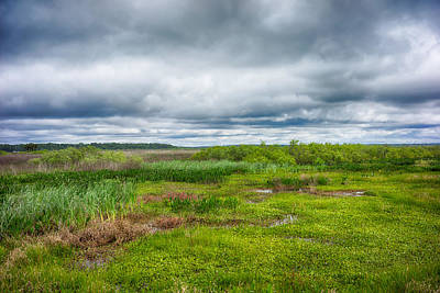 Photograph - Out On The Prairie by Howard Salmon