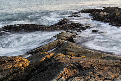 Photograph - Out On The Rocks by Andrew Pacheco