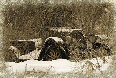 Photograph - Out To Pasture by Kathleen Scanlan