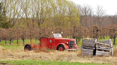 Catch Of The Day - Out to Pasture by Kurt Von Dietsch
