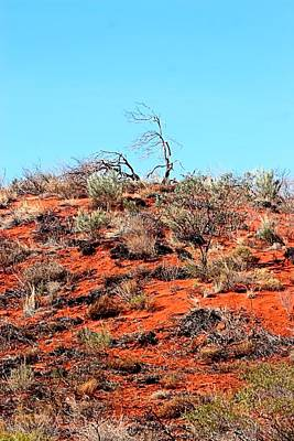 Photograph - Outback Australia by David Rich