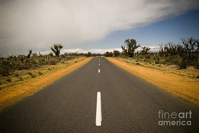 Outback Road Art Print by Tim Hester