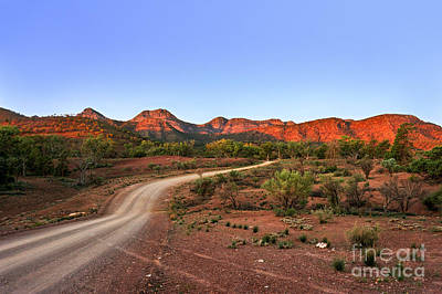 Photograph - Outback Track by Ray Warren