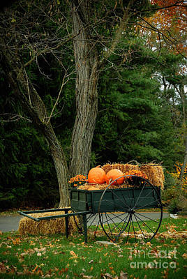 Pumpkins Photograph - Outdoor Fall Halloween Decorations by Amy Cicconi