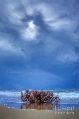 Outer Banks - Driftwood Bush On Beach In Surf II Print by Dan Carmichael