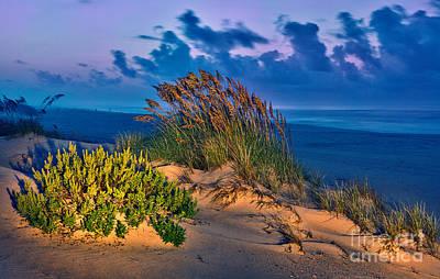 Outer Banks - Ocracoke Sand Dunes Oats Sunrise Art Print by Dan Carmichael