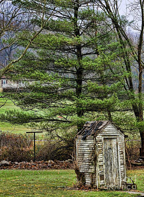 Outhouse In The Backyard Art Print by Paul Ward