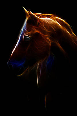 Photograph - Outline Of Horse by Athena Mckinzie