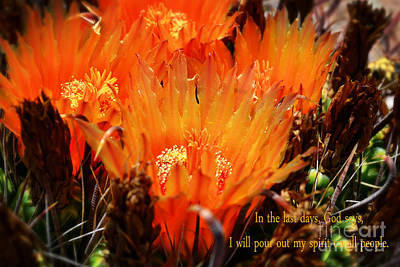 Outpouring Of Glory Print by Beverly Guilliams