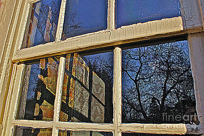 Photograph - Outside In by Geri Glavis