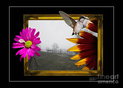 Photograph - Outside The Box by Cris Hayes