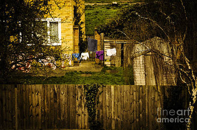 Over The Back Fence Art Print