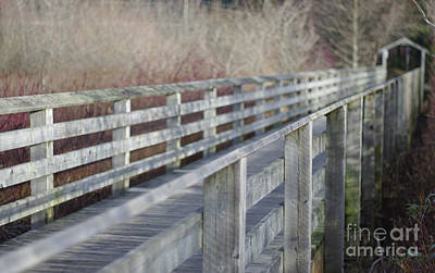 Photograph - Over The Bridge by Marilyn Wilson