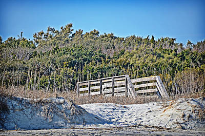 Photograph - Over The Dune by Linda Brown