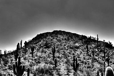 Photograph - Over The Hill by Michael Damiani