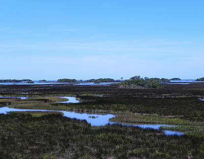 Photograph - Over The Marsh by Judy Wanamaker