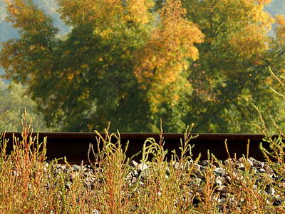 Photograph - Over The Rails by Wild Thing