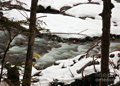 Photograph - Over The River... by Chuck Flewelling