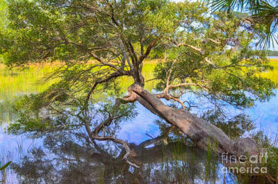 Photograph - Over The Water by Dale Powell