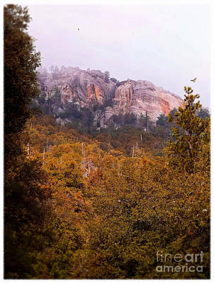 Hawk Birds Digital Art - Overcast At Suicide Rock - Idyllwild by Glenn McCarthy Art and Photography